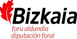 nuevo-bizkaia-forualdundia